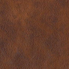 Sahara rust