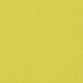 FAME  Colour 62067