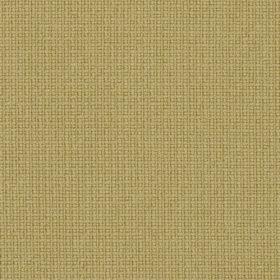 FAME  Colour 62068