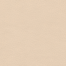 05_beige-500x500
