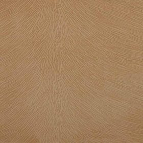 forest_06_mebel-top