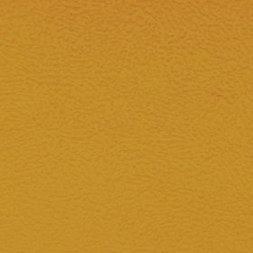 Aruba Yellow 12