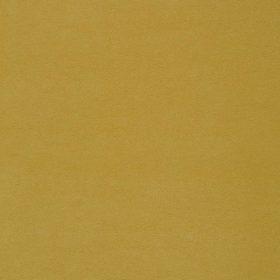 Penta12_yellow
